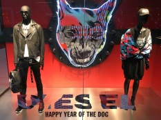 china-marketing-blog-diesel