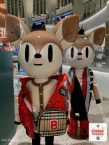 china-marketing-blog-chinese-new-year-rat-burberry-kids